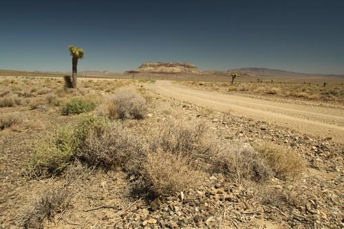 Death Valley (26)