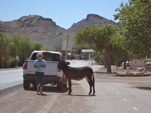 Death Valley (30)