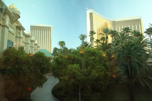 Vegas 1 (14)